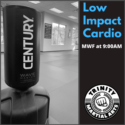 Low Impact Cardio Kickboxing in Hopewell Junction, East Fishkill